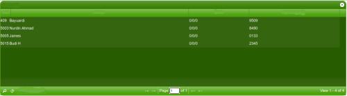 Grid sesudah mengalami edit pada CSS File